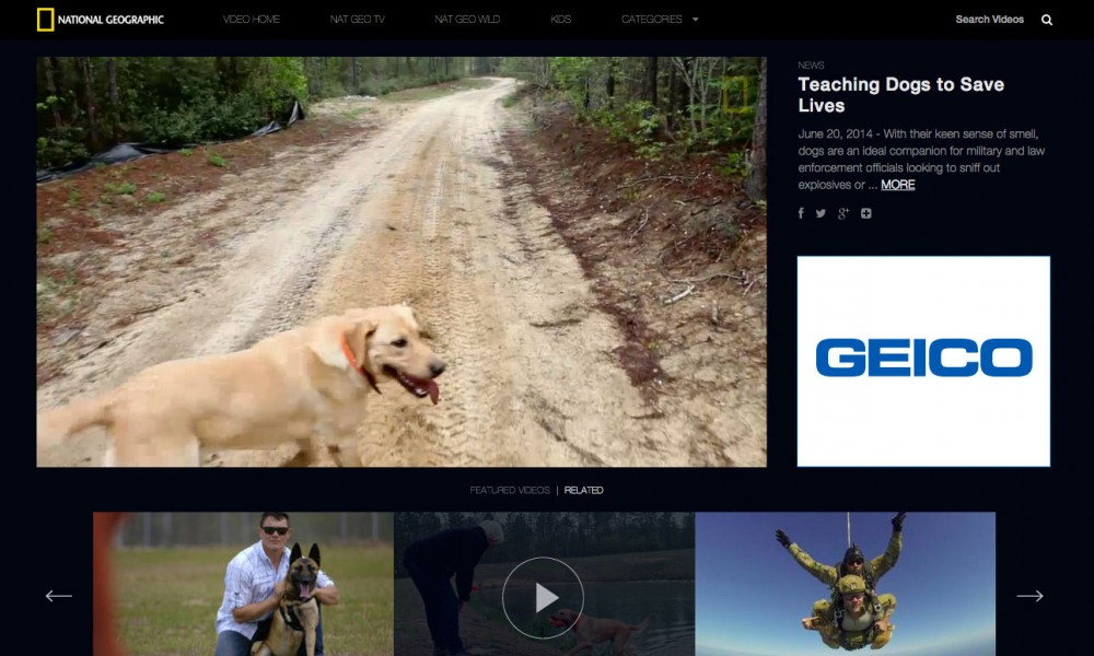 War Dog Training – National Geographic