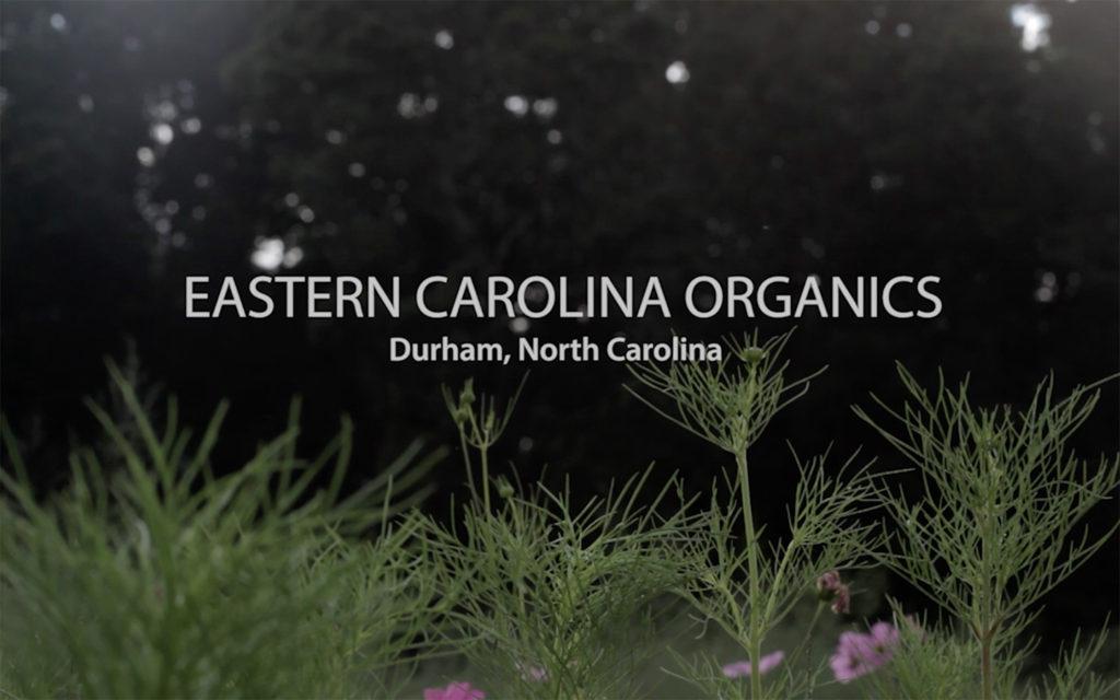 Whole Foods Market - Eastern Carolina Organics
